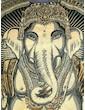 WEED Women's T-Shirt - Ganesha The Elephant God