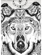 SURE Men´s T-Shirt Ghost Wolf